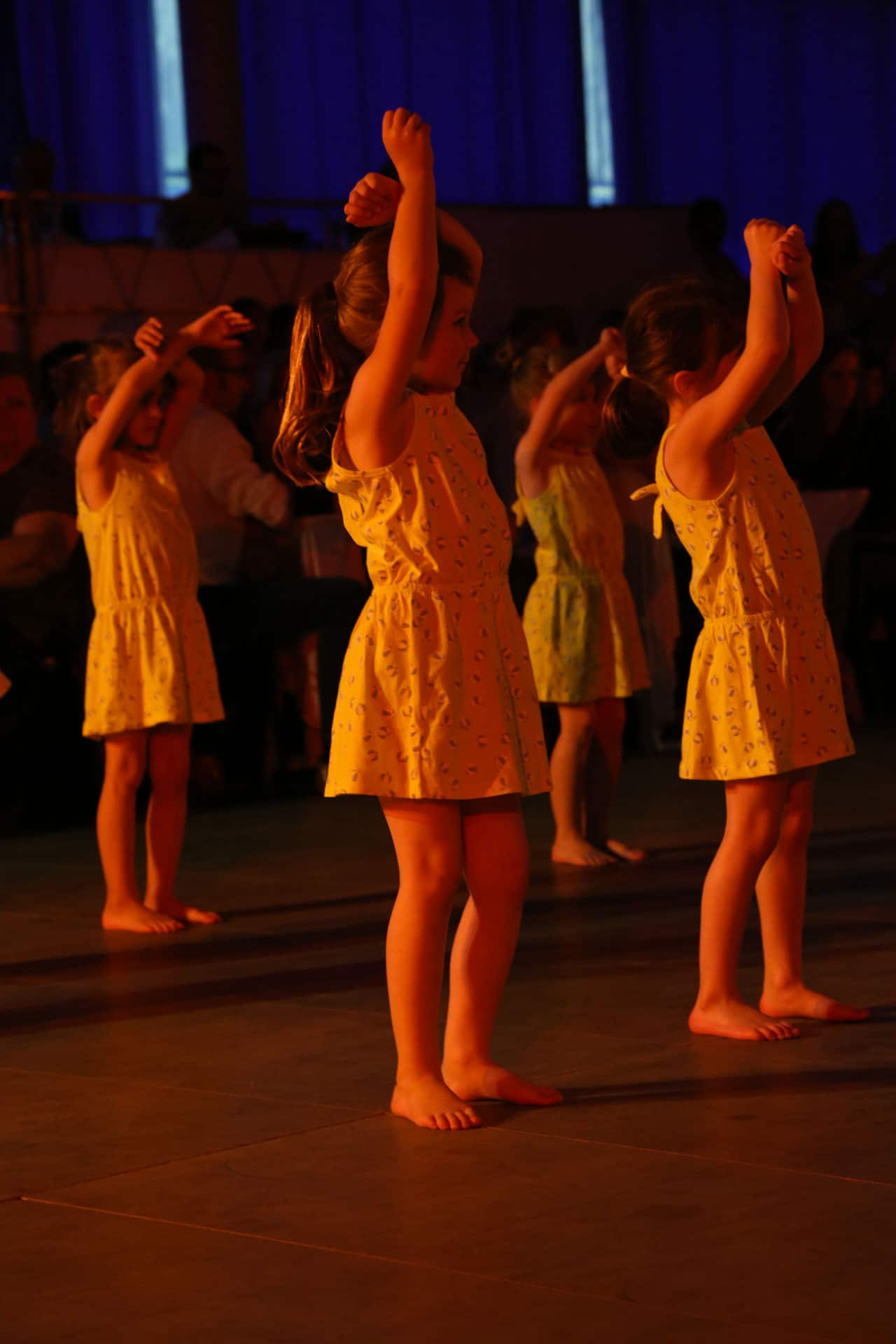 dansesavoye-gala2016-7