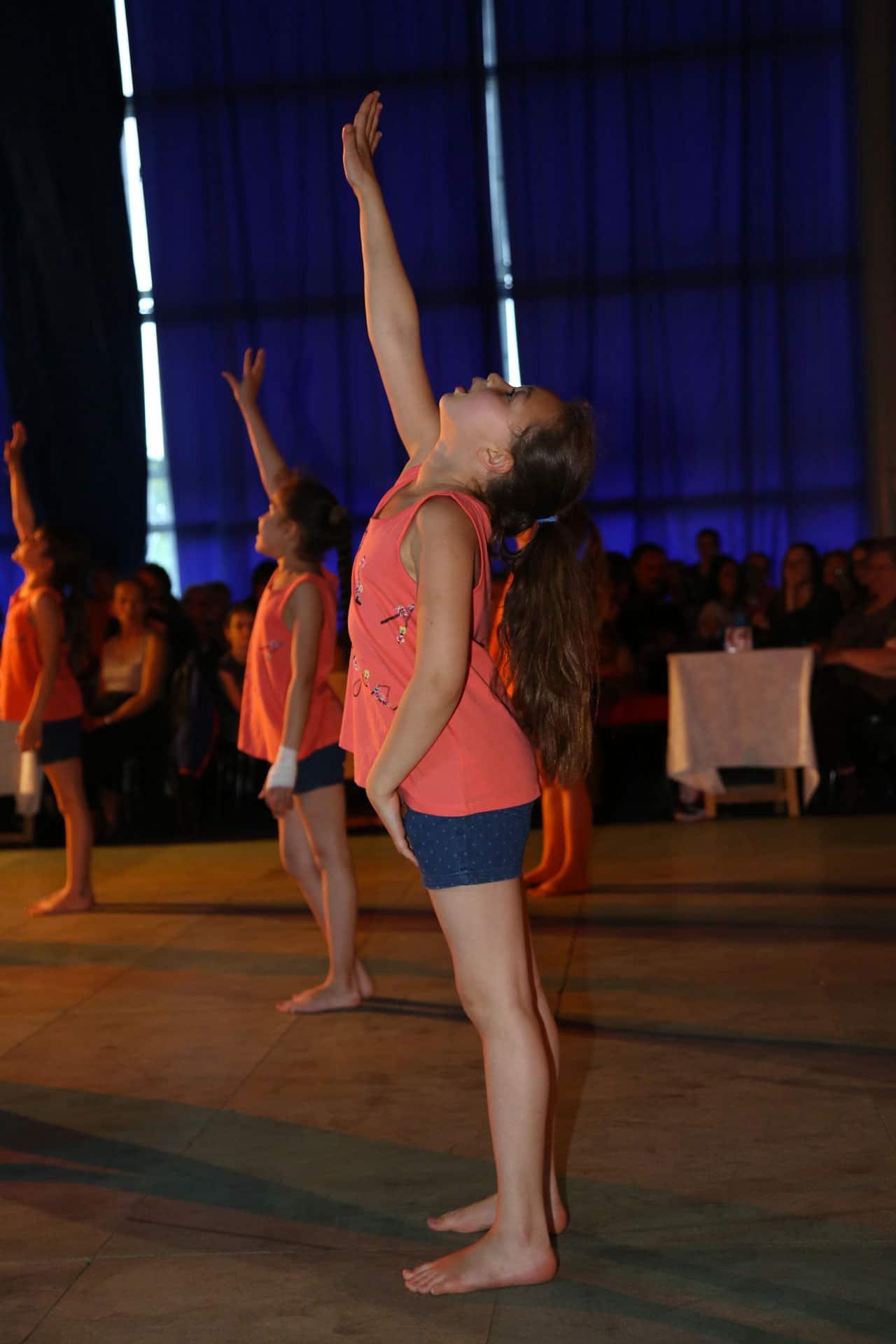 dansesavoye-gala2016-8